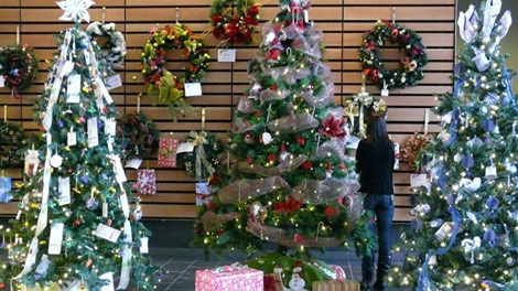 The 2010 Festival of Trees and Lights features beautiful Christmas trees decorated and donated by local businesses and groups. Take a sneak peek at the trees that can be won in the event's fundraiser raffle.