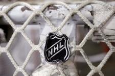 The NHL logo is seen on a goal net.