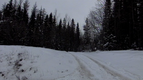 Police discovered the body of a murdered 15-year-old girl on an abandoned logging road just north of Vanderhoof, B.C., on Nov. 27, 2010. (CTV)