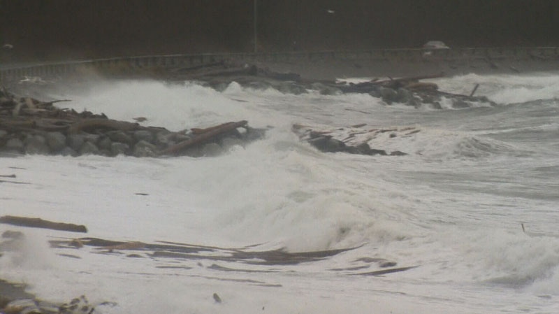 Winter weather hit B.C.'s South Coast over the weekend and caused a flooding risk in Delta. Dec. 15, 2012. (CTV)