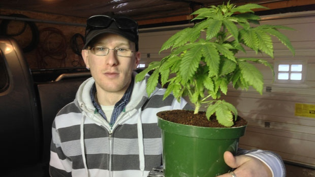 Steven Stairs with a marijuana plant he is licensed to grow in his home.