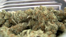 Federal government is proposing changes marijuana