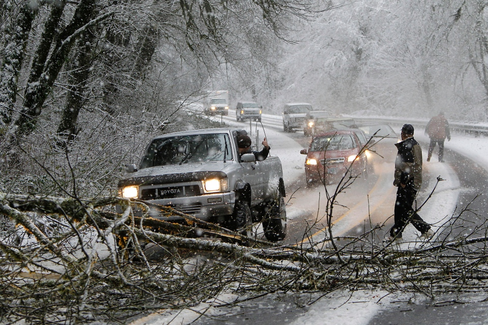 A motorist in a pickup truck pulls a tree out of the way about five miles East of Mapleton, Ore. as heavy snow in the Oregon Coast Range caused trees to fall across Highway 126 Thursday morning, Dec. 20, 2012. (The Register-Guard / Kevin Clark)