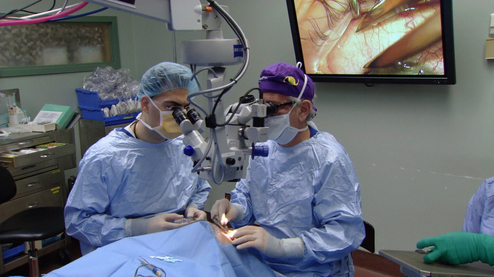 Doctors at Toronto Western Hospital preform a stem cell transplant to help a patient regain their sight.