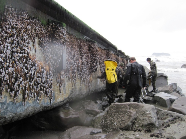 Washington tsunami debris experts team