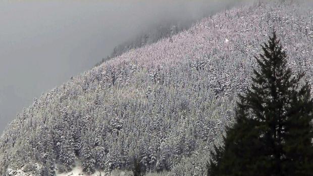 Cypress Mountain, B.C.