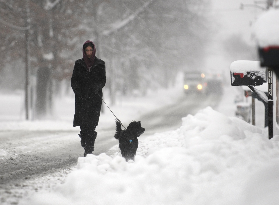 Tiffany Shacklee walks her friend's dog Ellie along Chautauqua Street as the snow continues to fall in Carbondale, Ill. on Wednesday, Dec. 26, 2012. Meteorologists are warning of a serious bout of winter weather about to hit Toronto and areas throughout Ontario on Wednesday as a storm brewing over Tennessee makes its way north of the border.  (The Southern Illinoisan / Aaron Eisenhauer)