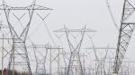 Hydro towers in Quebec. (The Canadian Press)