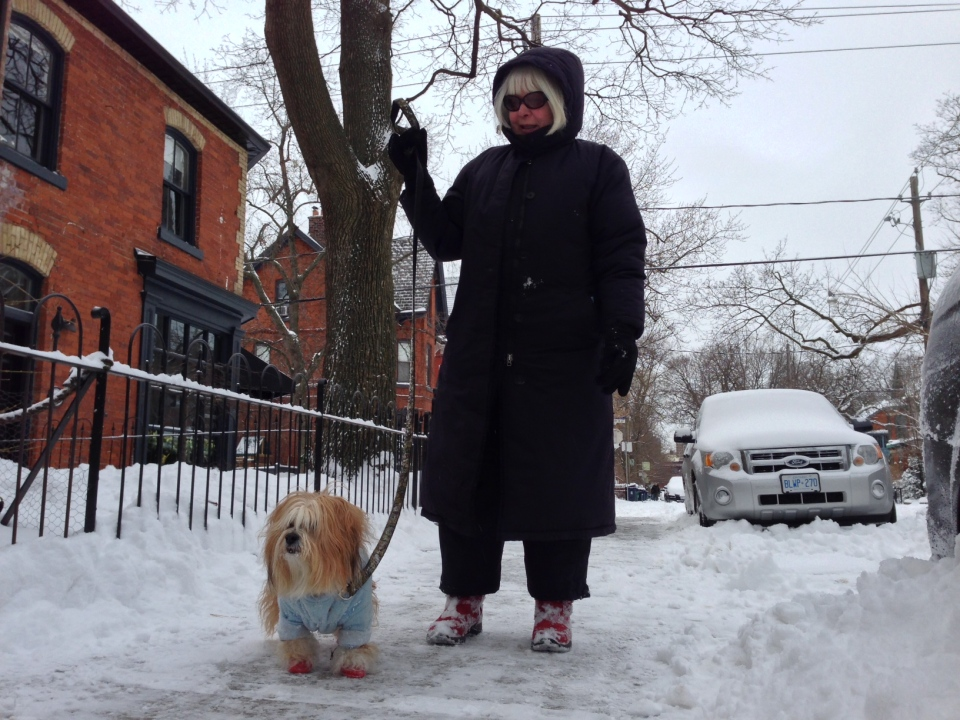 A woman walks her dog after several centimetres of snow fell on Toronto and the GTA Thursday Dec. 27, 2012. (Colin D'Mello/CTV Toronto)