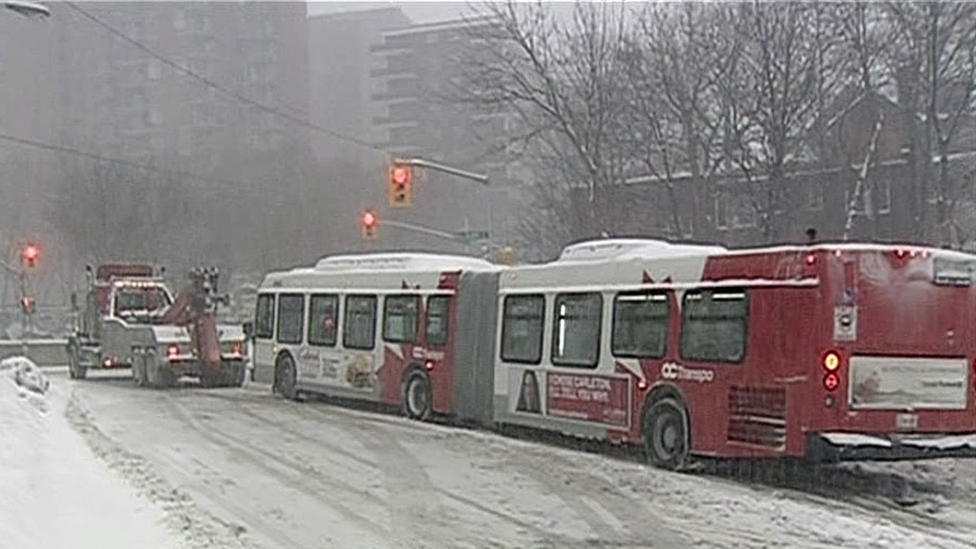Articulated bus towed