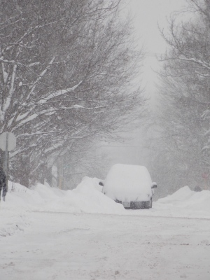 Winter Wonderland: Canadians dig out from winter