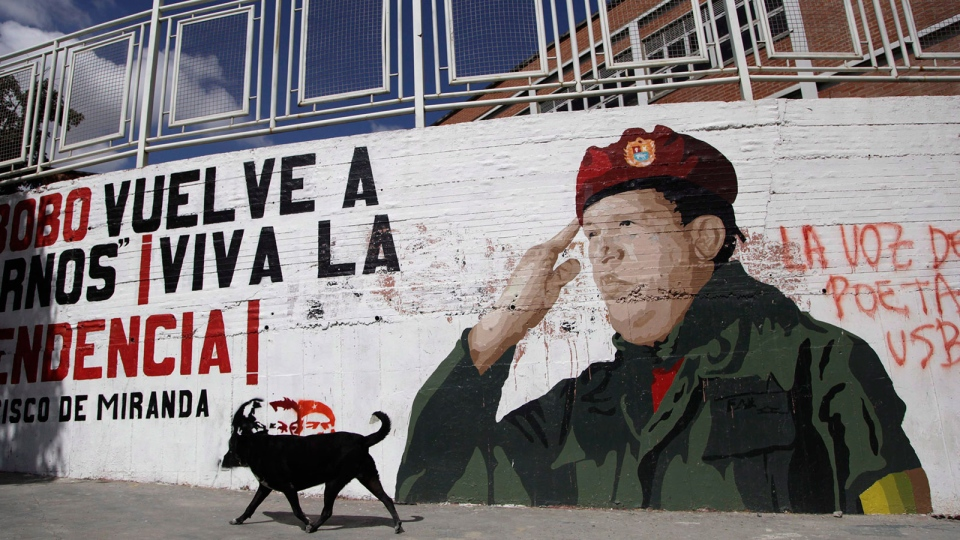A dog walks past a mural of Venezuela President Hugo Chavez in Caracas, Venezuela, Monday, Dec. 31, 2012. (AP / Ariana Cubillos)