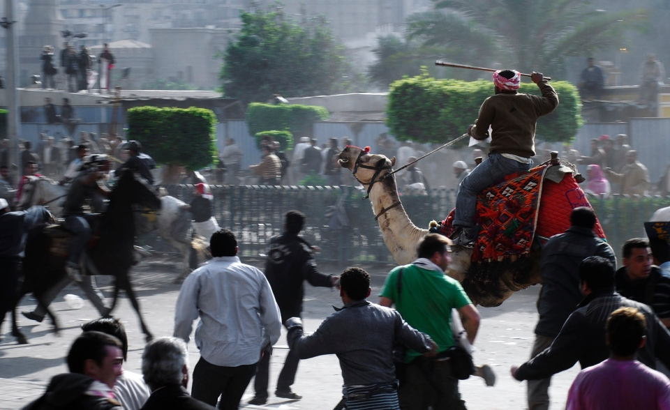 Supporters of President Hosni Mubarak, riding camels and horses, fight with anti-Mubarak protesters in Cairo, Egypt, Wednesday, Feb. 2, 2011. (AP / Mohammed Abu Zaid)