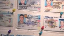 CTV Toronto: Minors use fake IDs to buy alcohol