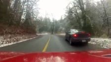 Speeder joyride