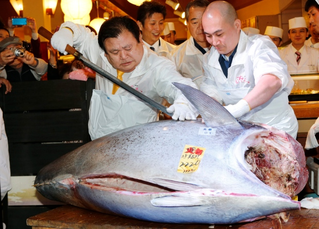 Tuna sells for record $1.76 million
