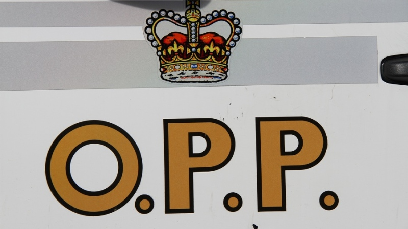 The Essex County Ontario Provincial Police logo as seen on this police cruiser on Monday, Jan. 7, 2013. (Melanie Borrelli / CTV Windsor)