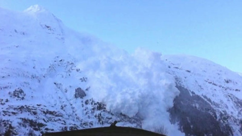 This file photo shows an avalanche rolling down a B.C. mountainside.