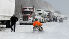 Stranded transport trucks sit on Highway 402 in Wyoming, Ont., Tuesday Dec. 14, 2010. (Beth Campbell / MyNews.CTV.ca)