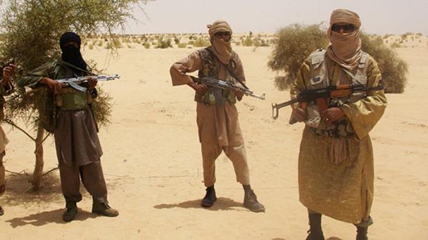 Rebels gain control in Mali