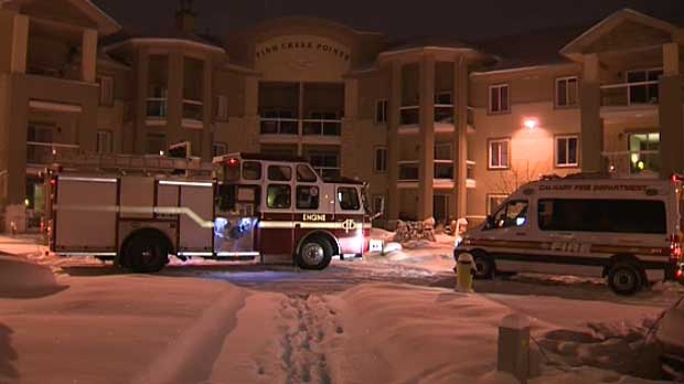 Calgary fire crews were called to this southwest condo complex after a resident inside said he spotted a half metre long brown snake in his unit.