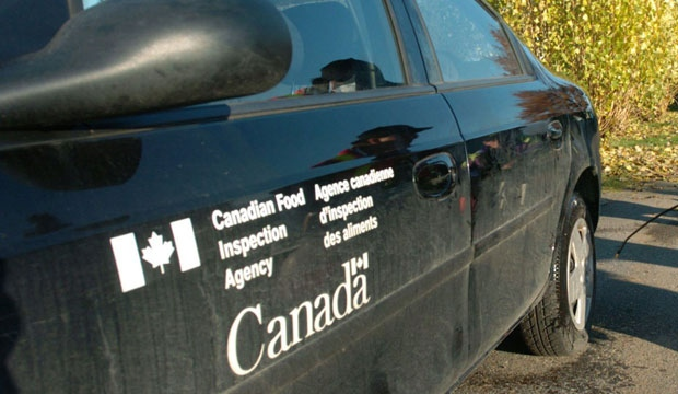 A Canadian Food Inspection Agency vehicle is shown in this file photo. (The Canadian Press/Don MacKinnon)