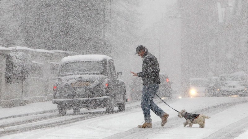 A pedestrian walks a dog during a snow-fall in central London, Saturday, Dec., 18, 2010. (AP / Alastair Grant)