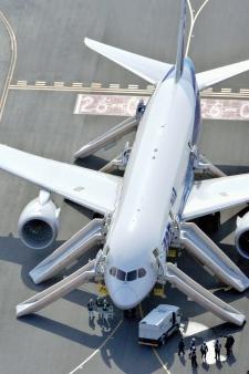 Dreamliner flights cancelled