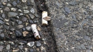 CTV News Channel: Recycling cigarette butts