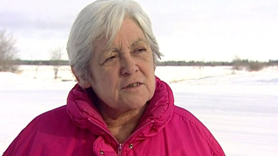 Brenda Serger found bison roaming on her property near St. Clement, Manitoba on Sunday, Jan. 20, 2013.