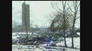 CTV Windsor: Michelle Maluske on Windsor hum