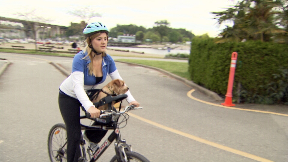A made-in-B.C. invention is catching the eye of cycling enthusiasts who want to give their dog a front-row view when they're out for a ride. (CTV)