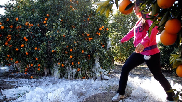 Produce prices rise due to California cold