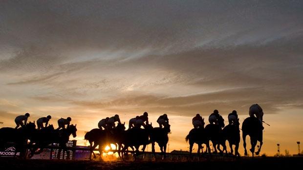 Loss of slots at Woodbine race track causes job cuts