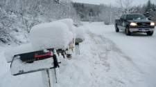 A motorist make his way along a snow covered road in Waterford, N.B. on Monday, Dec. 27, 2010. (David Smith / THE CANADIAN PRESS)