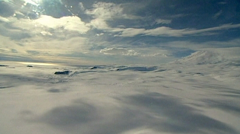 The wreckage of a plane carrying three Canadians was deemed 'not survivable' by a New Zealand's Rescue Co-ordination Centre from Antarctica on Saturday, Jan. 26, 2013.