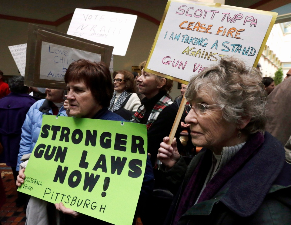 Activists with CeaseFirePa participate in a rally in the Pennsylvania Capital building in Harrisburg, Wednesday, Jan. 23, 2013. (AP / Matt Rourke)