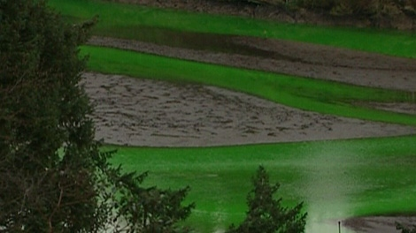 The Goldstream River in Langford, B.C. mysteriously turned neon green on Dec. 29, 2010. (CTV)