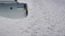 Antarctics search called off