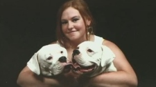 dogs stolen