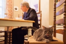 Stephen Harper live-tweets his day