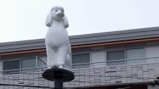 poodle statue