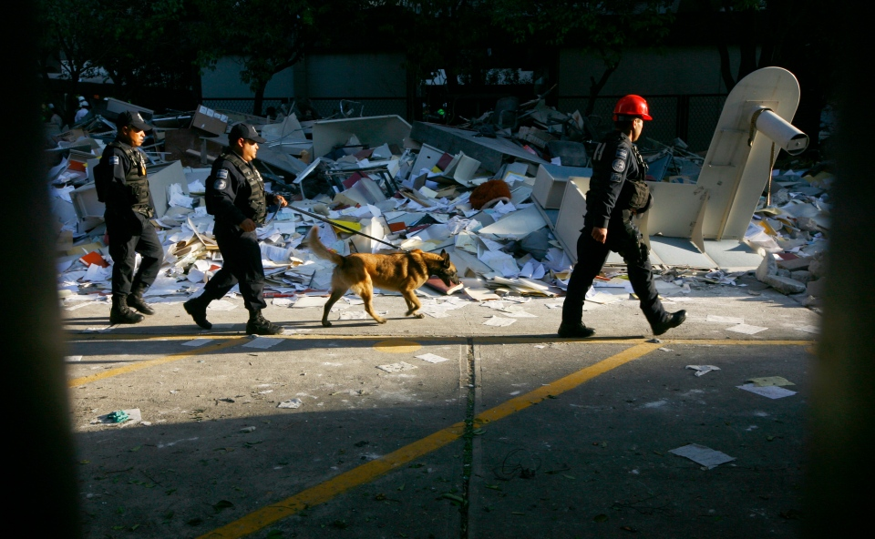 Police walk with a search dog past debris caused by an explosion at the state-owned oil company PEMEX office complex in Mexico City on Friday, Feb. 1, 2013. (AP / Marco Ugarte)