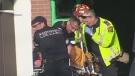 Paramedics remove a shooting victim from 1021 Birchmount Rd. on Wednesday, Jan. 1, 2011. The man later died in hospital.