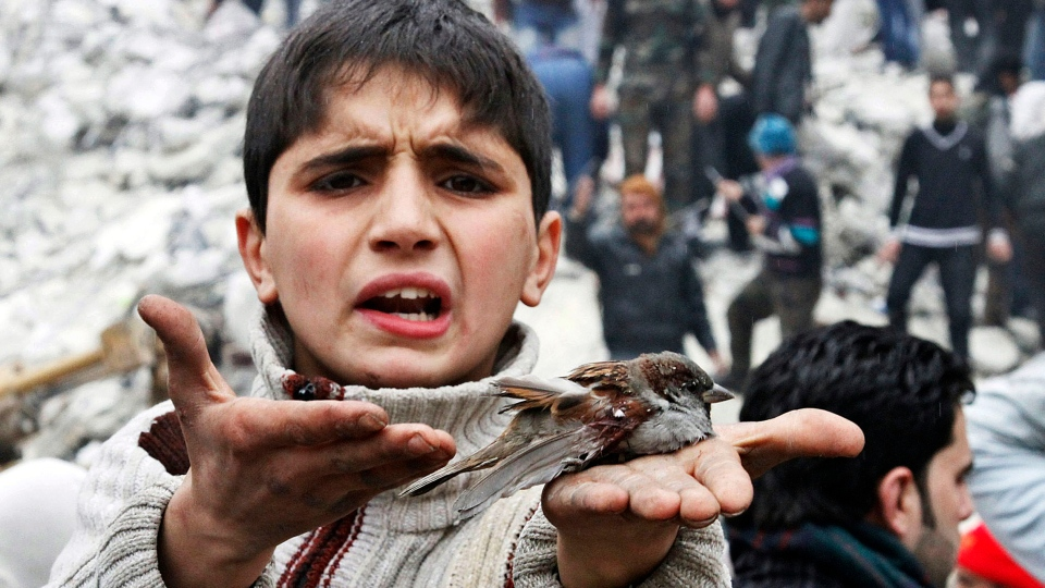 A Syrian boy holds a bird in his hand that he said was injured in a government airstrike hit the neighborhood of Ansari, in Aleppo, Syria, Sunday, Feb. 3, 2013. (AP / Abdullah al-Yassin)