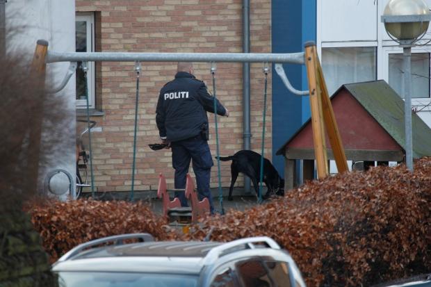 Lars Hedegaard shooting