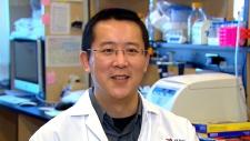 Dr. Hang Yin, brown fat, obesity