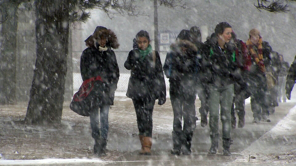 Students walk in the snow as a winter storm descends on Toronto, Thursday, Feb. 7, 2013.