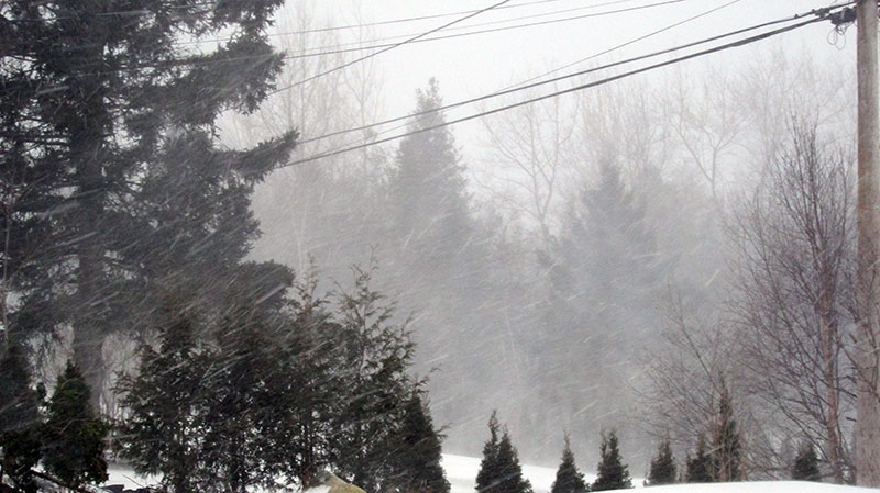 MyNews user Susan Cleveland sent in this photo of 'off and on white-out conditions' in Quispamsis, N.B. on the morning of Saturday, Feb. 9, 2013.