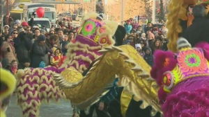 CTV Calgary: Greeting the year of the snake